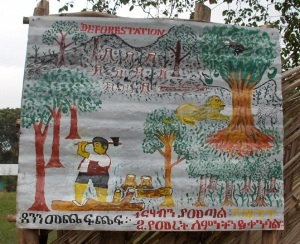 Saattsa Primary School: Sign about the Dangers of Forestation