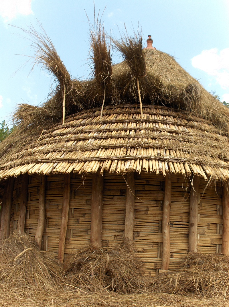 House grass | Basket to Ethiopia