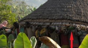 Men carrying the roof of a house